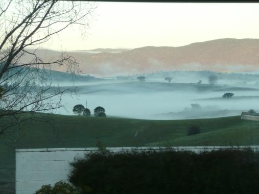 Fog in July 2