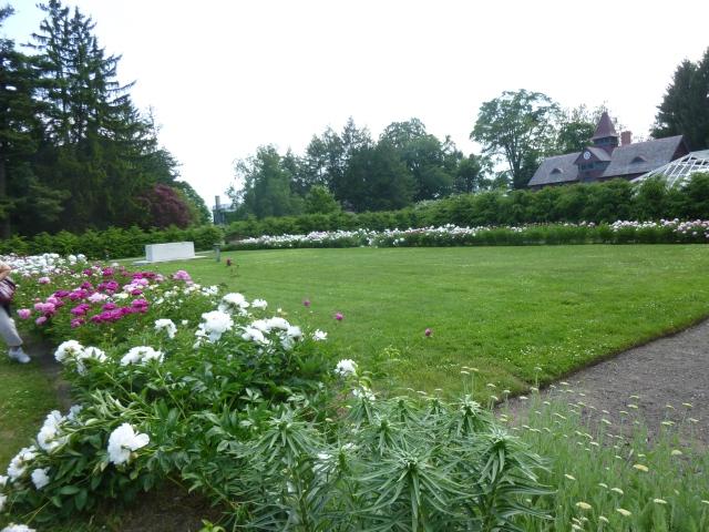 Rose Garden & Graves