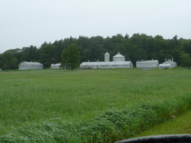 A dairy farm down the road
