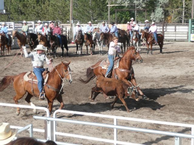 The calf roping