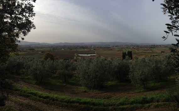 Looking back to Arezzo